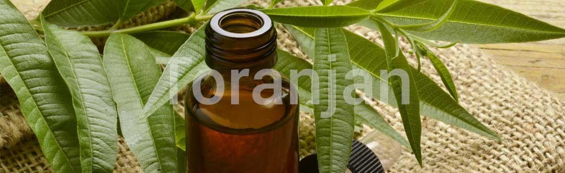 روغن درخت چای - ترنجان
