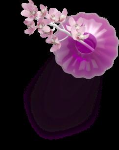 تصویر گل روی عکس محصولات