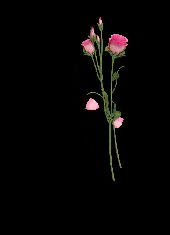 بنر گل رو محصول مرطوب کننده
